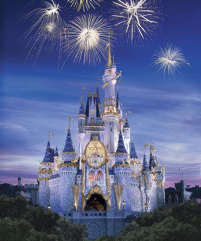 Went to Disney Land