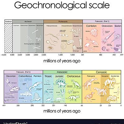 Geogronoloogiline skaala Elise Jõgiste BK 2020/2021 timeline