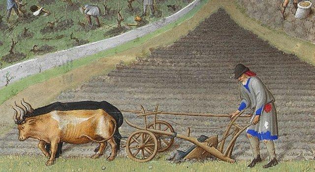 Europe is a farming economy