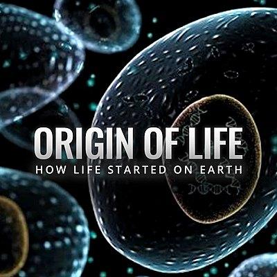 Stage 1 Biology Timeline