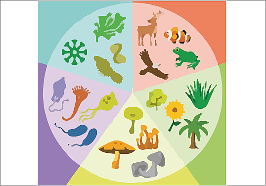 The Five Kingdoms of Life