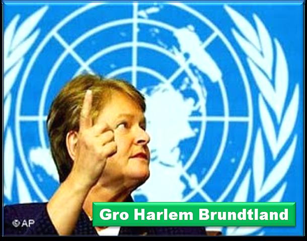 Primer intento en el Informe Brundtlhand