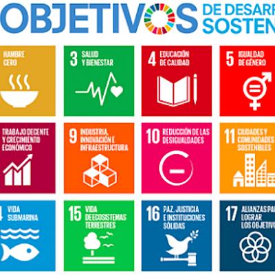 Encuentros más relevantes del desarrollo sustentable. timeline