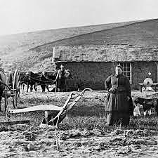•	Homestead Act