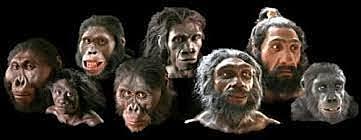 40 mil años antes