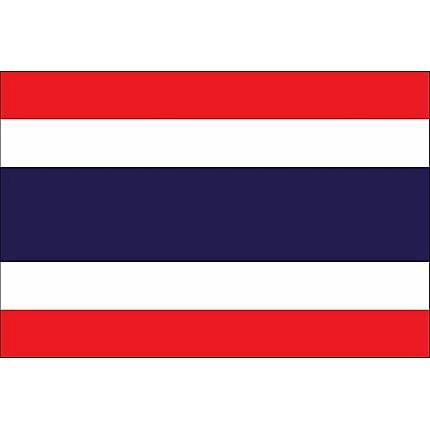Tailandia reporta su primer caso