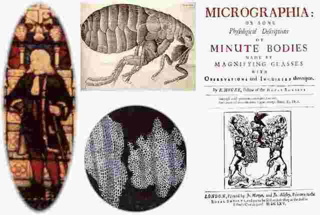 Discovery of Micrographia