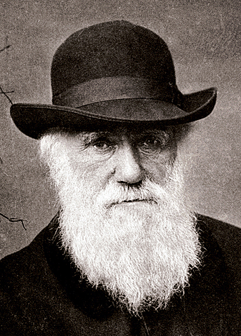 Charles Darwin puts forward the theory of evolution in On the Origin of Species, the result of 20 years' research