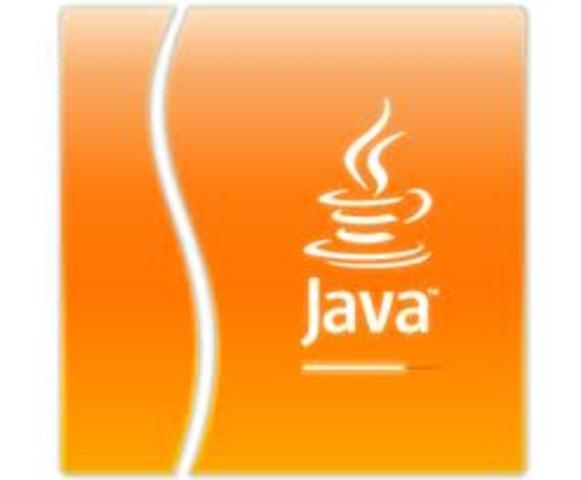 Java se creó como una herramienta de programación para ser usada en un proyecto de set-top-box en una pequeña operación denominada the Green Project en Sun Microsystems en el año 1991. El equipo (Green Team), compuesto por trece personas y dirigido por Ja