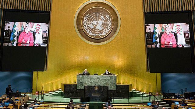 Añez en Asamblea de la ONU denuncia «acoso sistemático» del «gobierno kirchnerista»