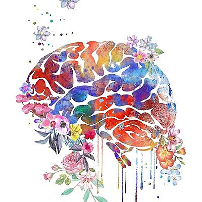 Enfoques De la Psicología timeline