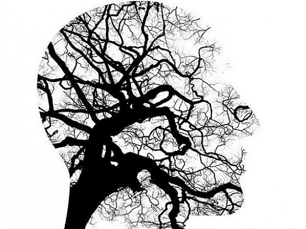 (Psi) Teorías psicodinámicas