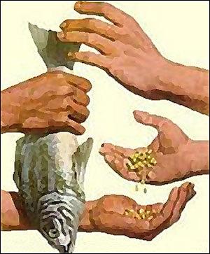 Trueque.Primera forma de comercio que consiste en el intercambio de productos  hechos a mano.