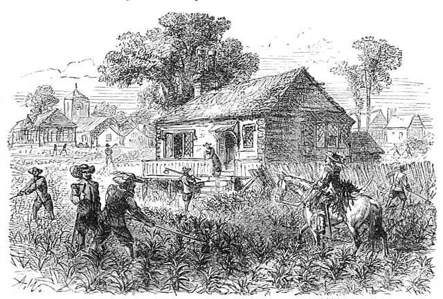 Tobacco introduced to Virginia Colony by John Rolfe
