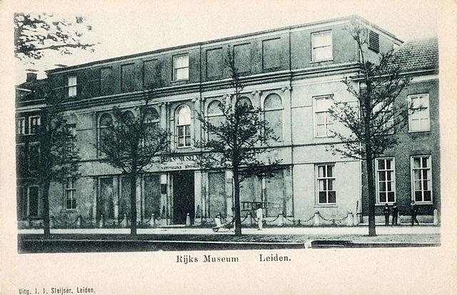 'S Rijksmuseum van natuurlijke historie