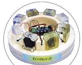 ECOBOT II