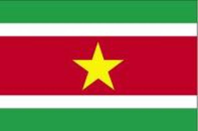 Misión Especial en Suriname (1992-2000)