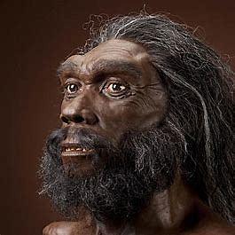Homo Heidelbergensis (300.000 a.c)