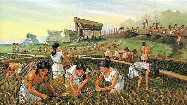 Surgimiento de la agricultura.