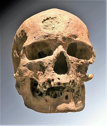 Hombre de Cromagnon (Homo Sapiens )