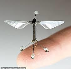 Microrobot : Robofly