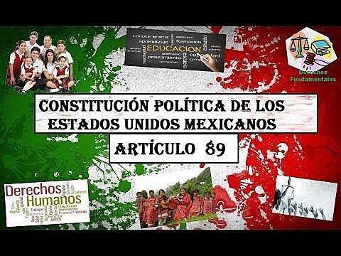Artículo 89
