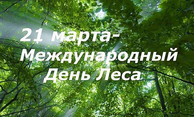 21 марта-международный день леса