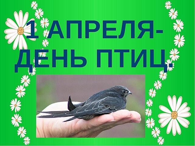 1 апреля- день птиц