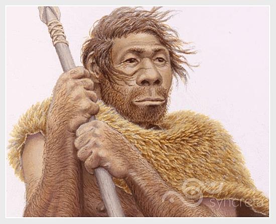 El Homo sapiens