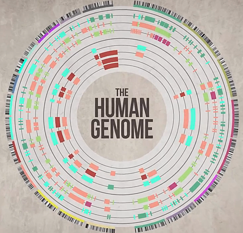 Full-scale Human Genome Sequencing