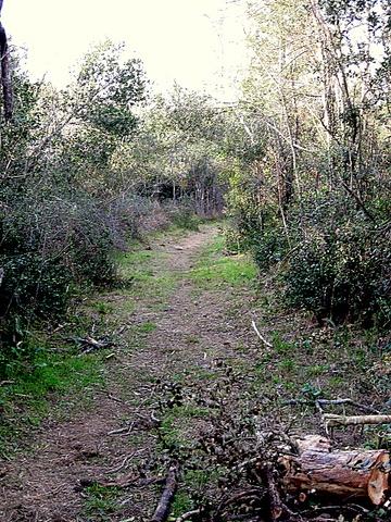 Torroella de Fluvià - km 1,4