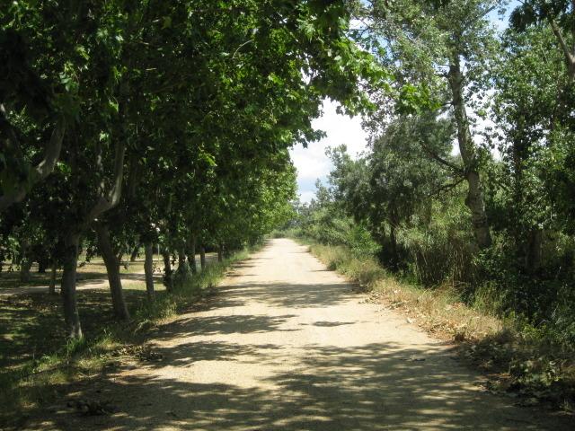 Sant Pere Pescador, km 4