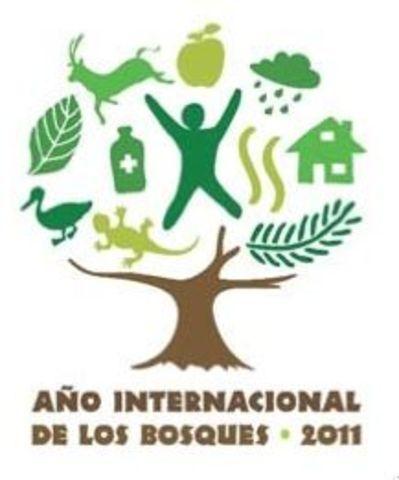 2011 AÑO INTERNACIONAL BOSQUES