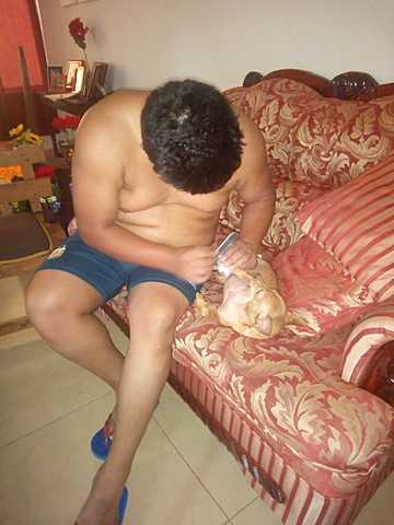 love of dog