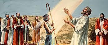 David ungido del rey