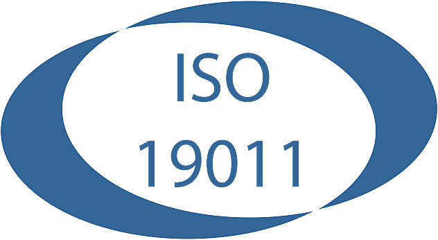 ISO 19011