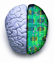 """""""Hubo un importante cambio de perspectiva: del estudio del comportamiento y sus productos, se paso al estudio de los mecanismos internos que participan  en el pensamiento y la acción"""""""