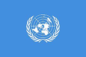 ORGANIZACION DE LAS NACIONES UNIDAS (ONU)