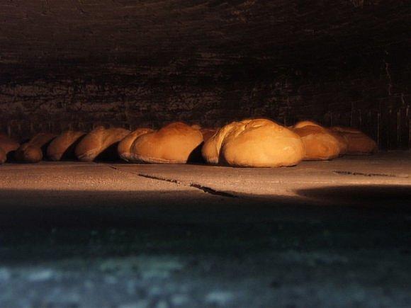El pan de todos los dias