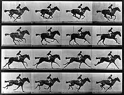 El caballo de Muybridge