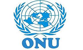 Organización de la Naciones Unidas (ONU)