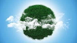 Relación local-global y el medio ambiente.