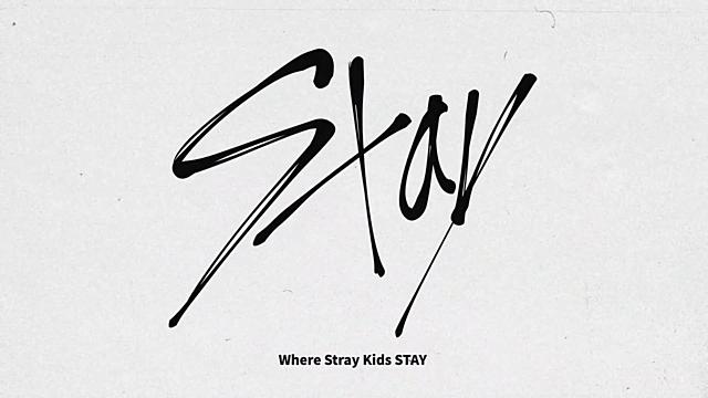 Fandom name: STAY