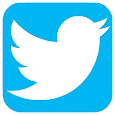 Surge Twitter