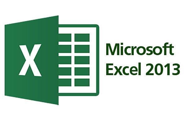 Microsoft excel 15.0