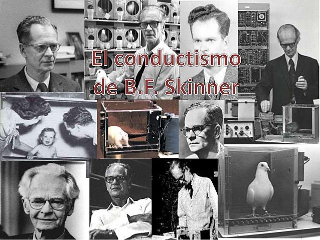 B. F. Skinner, experimento de ¨La superstición de las palomas