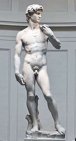 Michelangelo sculpted the statue of David