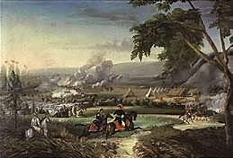 Batalla del río Palo