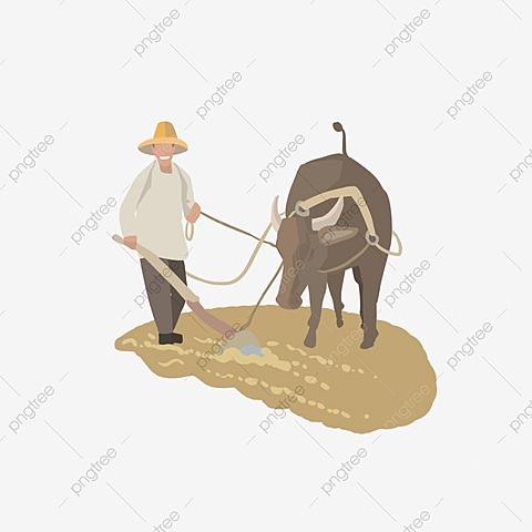 SEGUNDA ETAPA: (La agricultura)