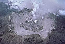 Impactos ambientales de  1991